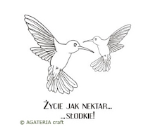 https://sklep.agateria.pl/pl/zestawy/1628-kolibry-1-5902557834297.html