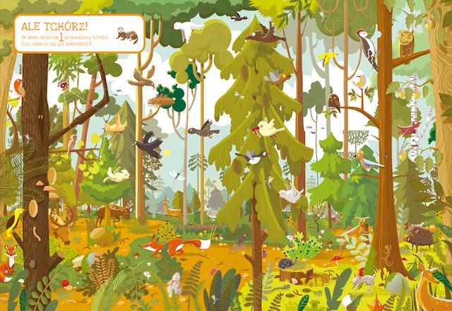 katarzyna urbaniak ilustracje wilga zagubione zwierzaki miasto zagubionych rzeczy las