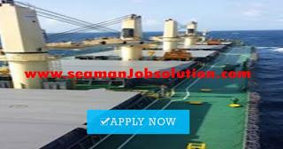 Fitter for bulk carrier vessel