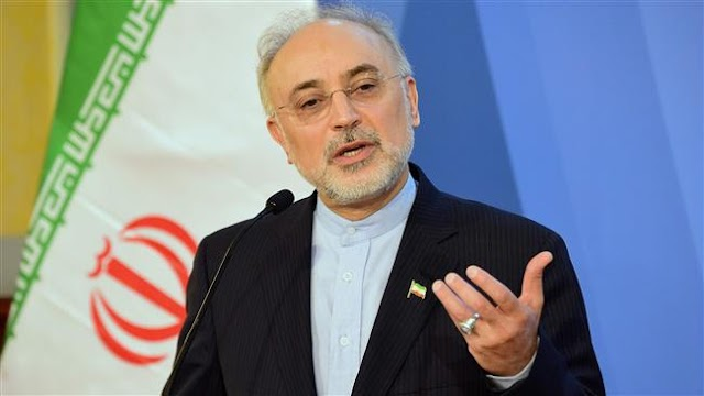 Iran well-prepared to respond to sanctions renewal by US: Ali Akbar Salehi