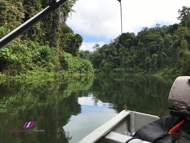 royal belum rainforest postcard view sungai kooi