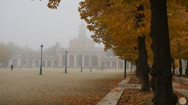 Aranjuez cubierto por la niebla