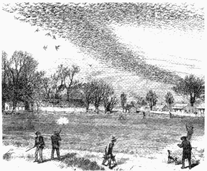 Passenger pigeon flock being hunted. Author: The Illustrated Shooting and Dramatic News. Image courtesy: Wikimedia Commons.
