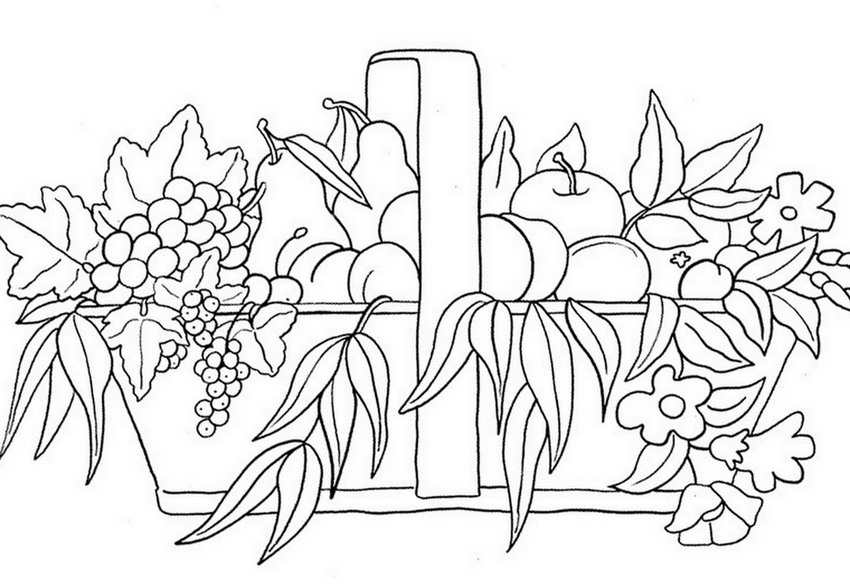 Dibujo En Linea Uva: Imágenes Arte Pinturas: Flores Y Frutas Para Colorear