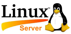 Reverse Proxy Server For Linux Web Server