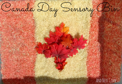 Canada Day Sensory Bin from And Next Comes L