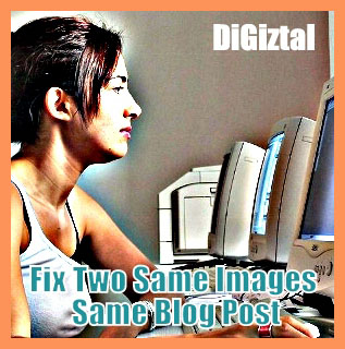 fix two same images in one blog post wordpress