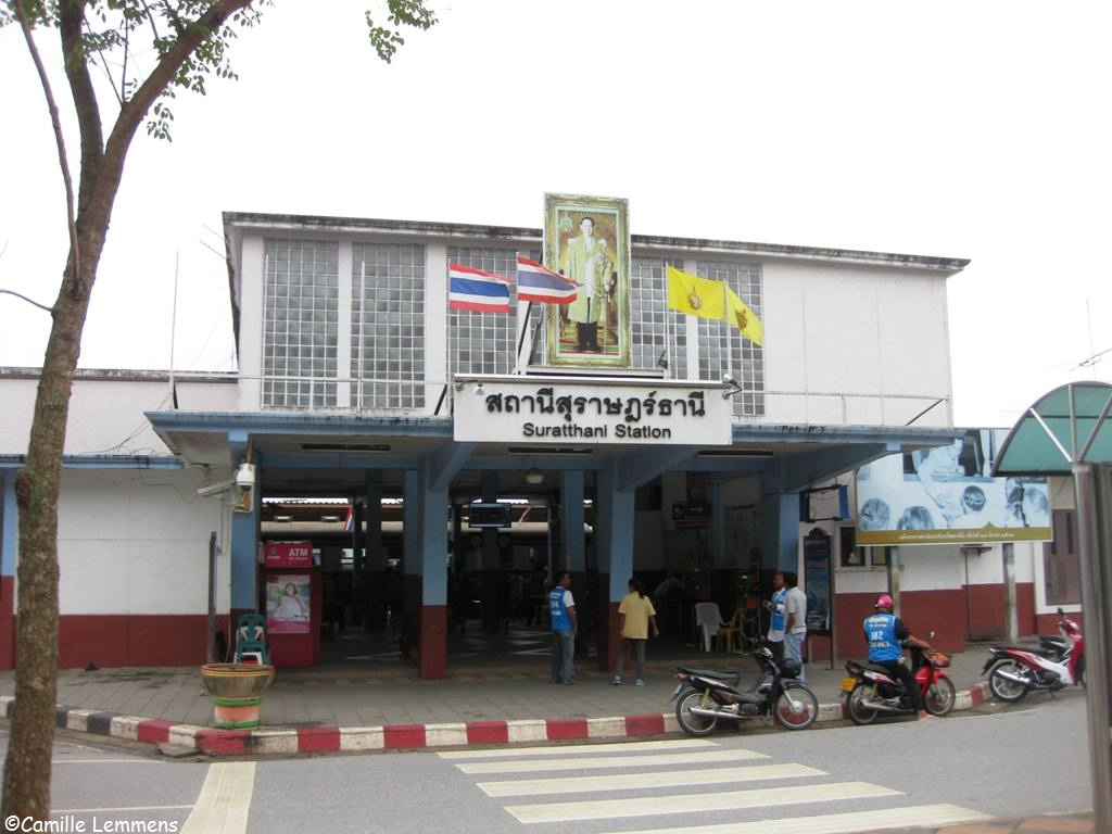 how to get from hok samui to surat thani