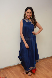 Pragya Jaiswal in beautiful Blue Gown Spicy Latest Pics February 2017 066.JPG