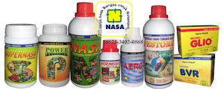 CARA MEMBUDIDAYAKAN WORTEL DENGAN PUPUK ORGANIK NASA