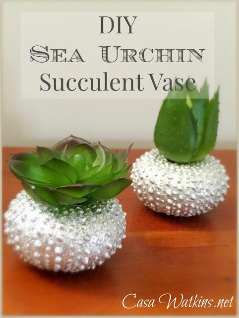 sea urchin succulent vase diy
