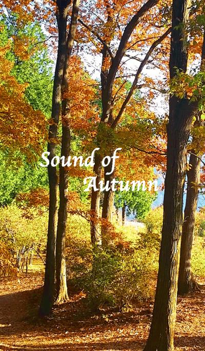 Sound of Autumn