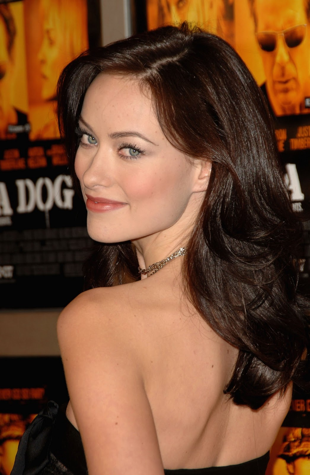 Olivia Wilde Profile And New Pictures 2013: Olivia Wilde Pictures Gallery (8)