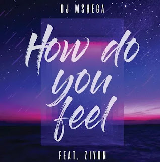 DJ Mshega feat Ziyon - How Do You Feel