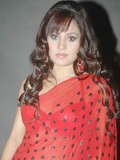 Liza Malik Saree 5
