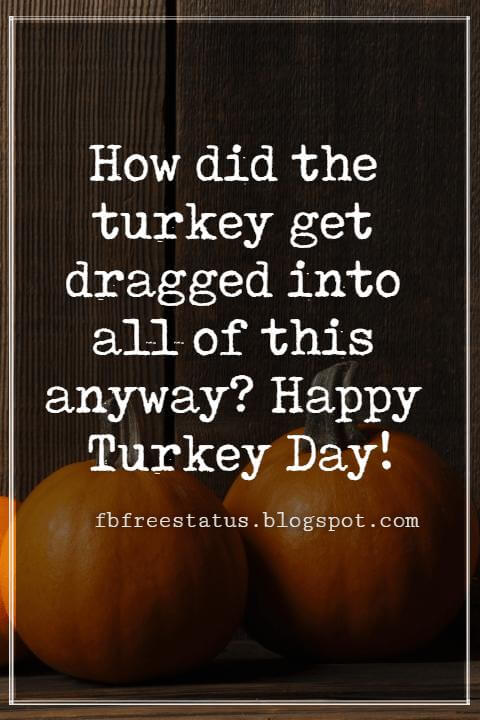 Sayings For Thanksgiving Cards, How did the turkey get dragged into all of this anyway? Happy Turkey Day!