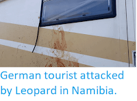 http://sciencythoughts.blogspot.com/2018/04/german-tourist-attacked-by-leopard-in.html