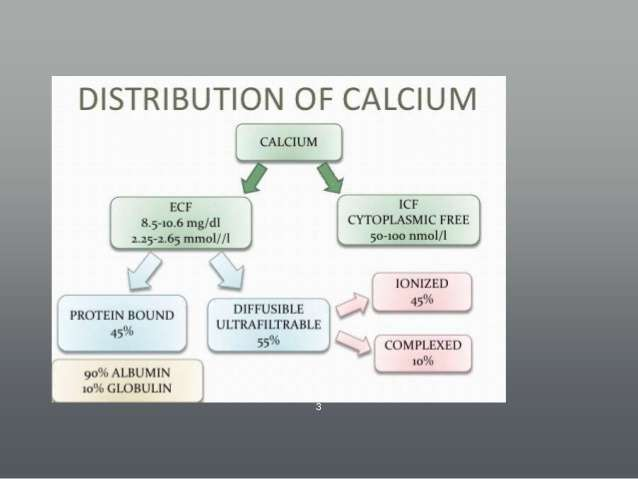 Distribution-of-Calcium-in-Humans