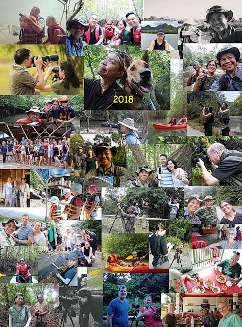 Best langkawi nature tours