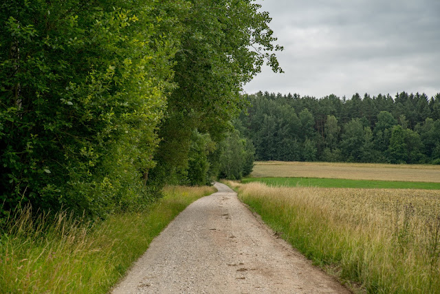 Bernsteinweg Schnaittenbach  Wandern im Amberg-Sulzbacher Land 08