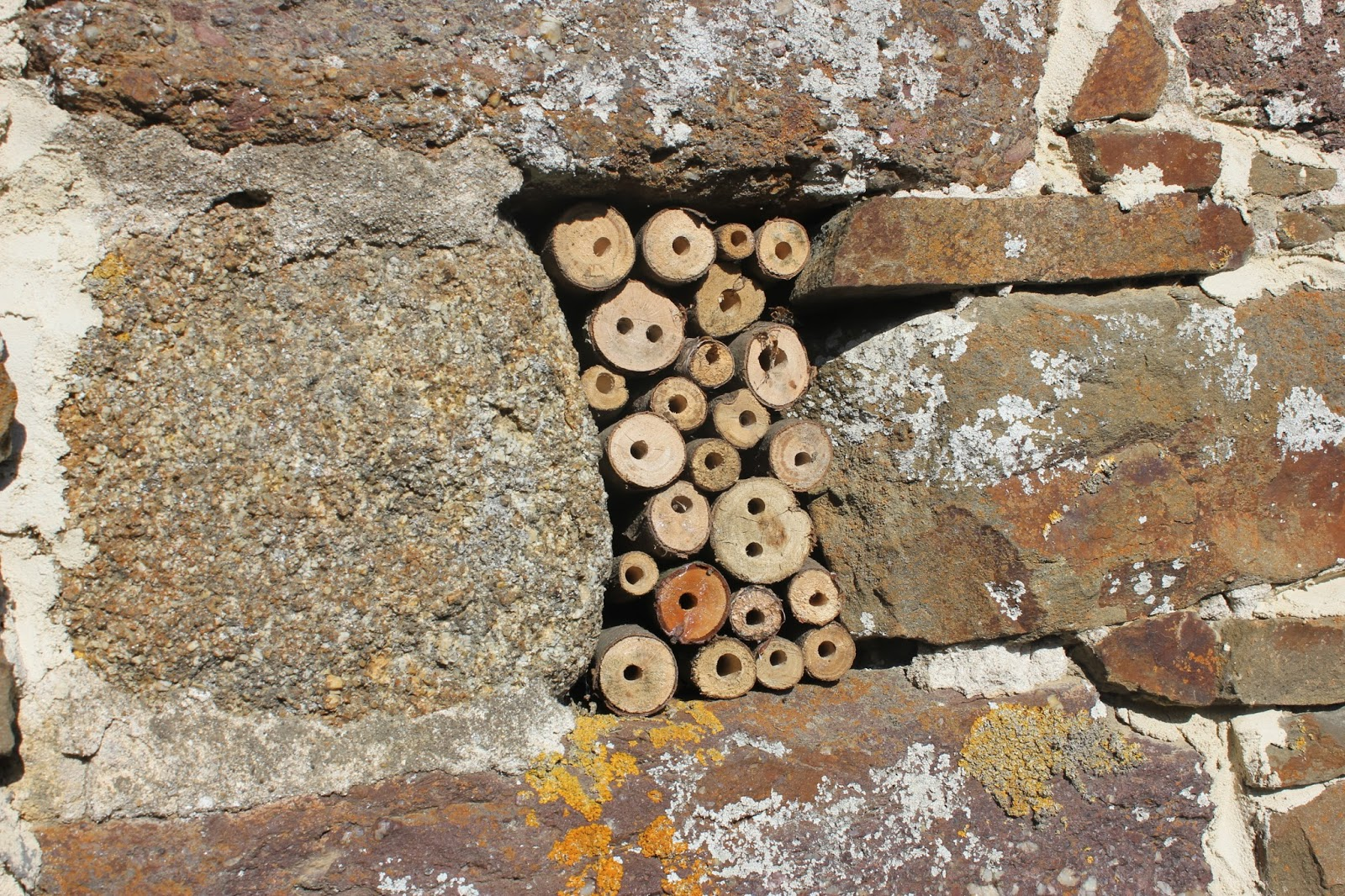 Simple Mason Bee House