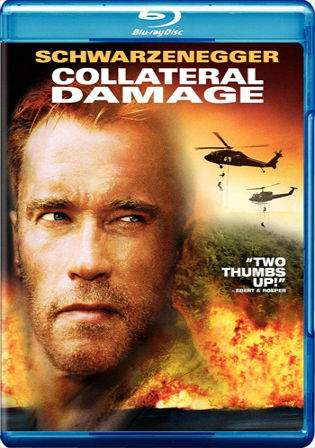 Collateral Damage 2002 BluRay Hindi 850Mb Dual Audio 720p