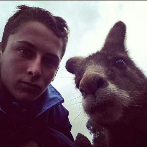 Funny Animals Taking Selfies With Humans (35 Pics