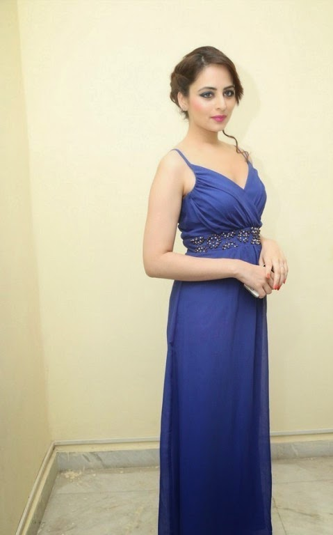 Actress Zoya Afroz Picture Gallery in Blue Long Dress  3.jpg