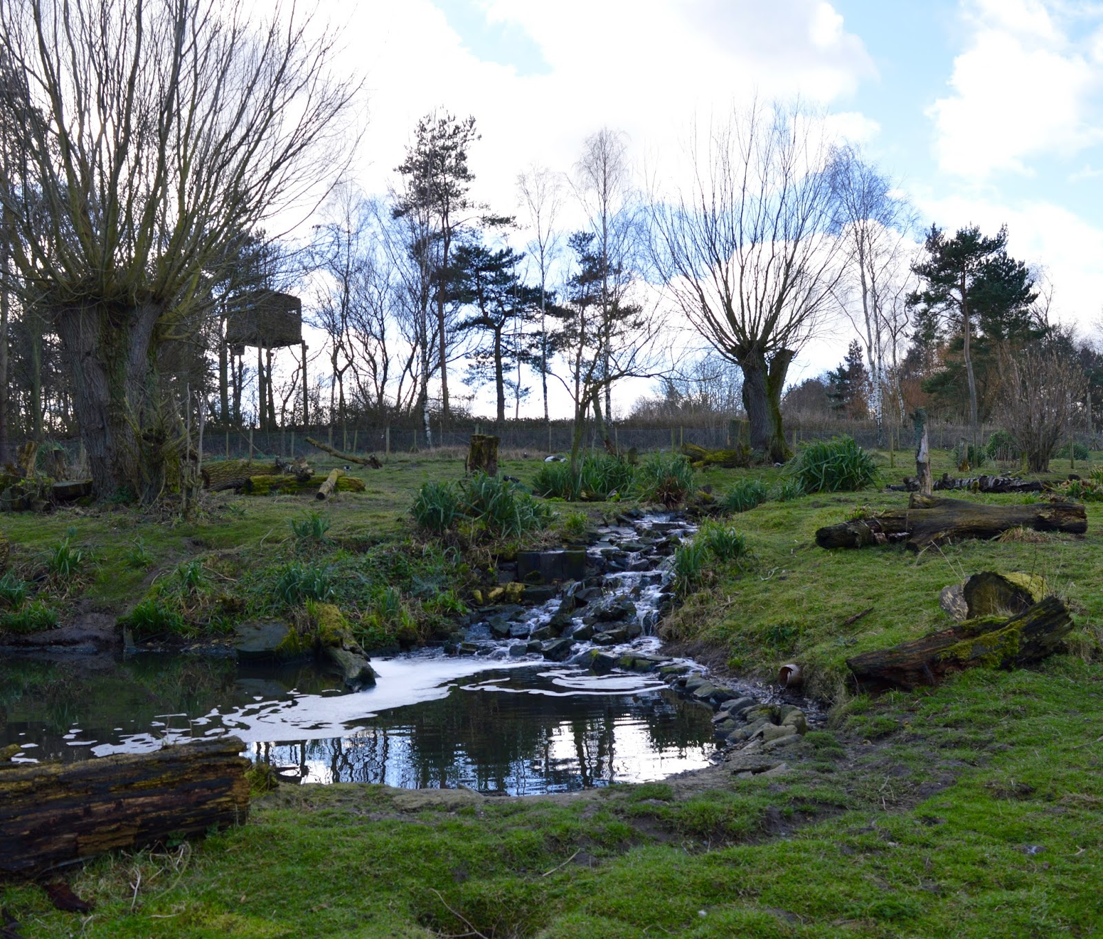 WWT Washington Wetland Centre | An Accessible North East Day Out for the Whole Family - waterfall