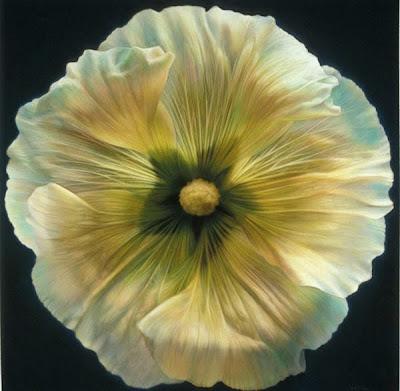 Bonita pintura de flor