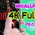 TELA VIVA - Whall 4k FulHd pro 2019
