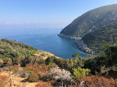 View over Spiaggia dei Mangani with colored Mediterranean macchia.