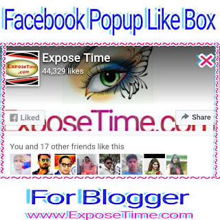 blog-keliye-facebook-popup-like-box