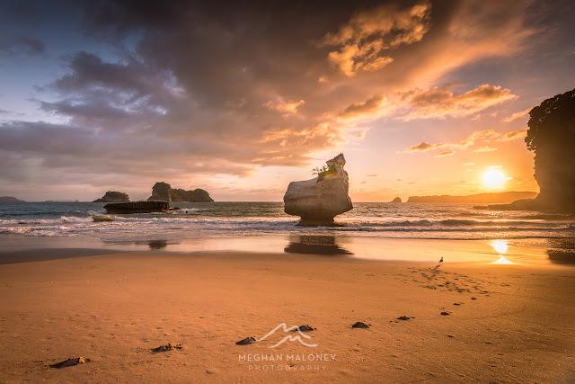 mares leg cove sunrise coromandel