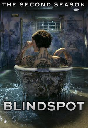 Baixar Blindspot 2ª Temporada Dublado e Legendado