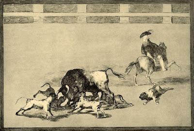 perros en las corridas