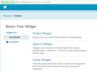 My Website Profile Widget Twitter