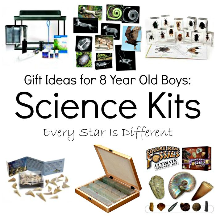 gift ideas for 8 and 9 year old boys dinomite s wish list