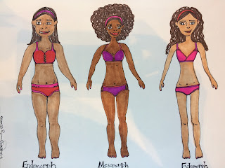 Endomorph, Mesomorph and Ectomorph
