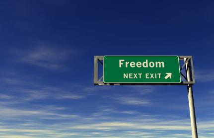 13 Freedom Ideas Freedom Movie Revenge Raw For Beauty
