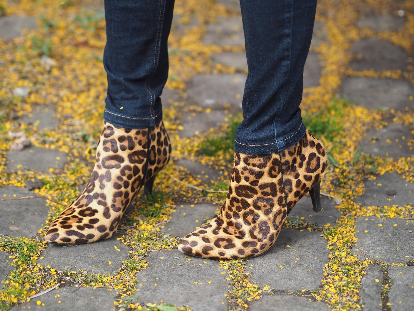 Bluma Leopard print high heeled boots by Lotus