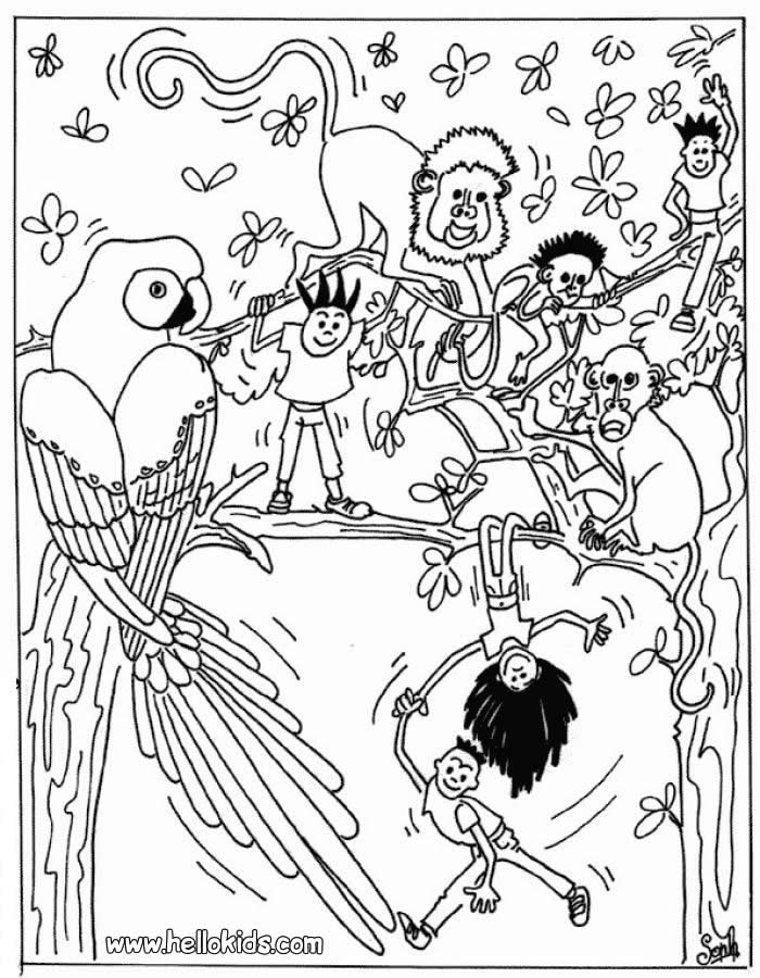 jungle theme coloring pages - photo#41