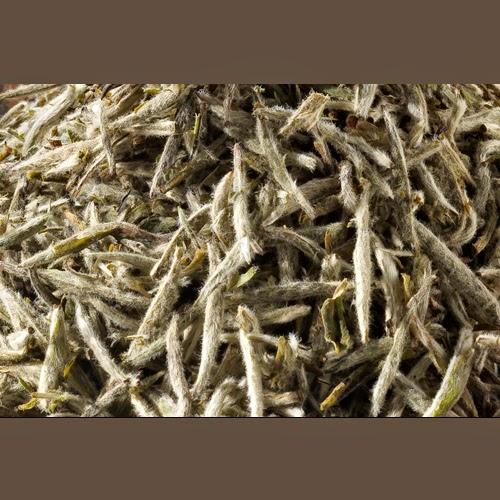 Tsleeve Blog White Tea