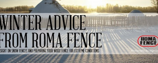 Pro-Tip Tuesday: Winter Advice from Roma