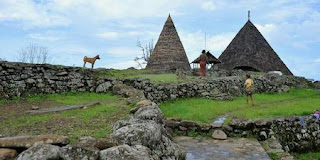Kampung Tado