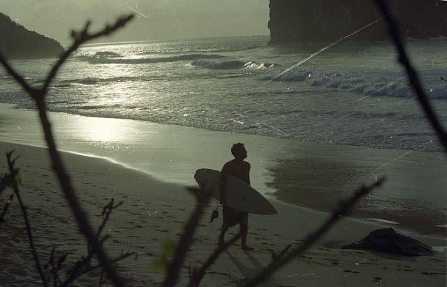 Surfista é mordido por tubarão em Fernando de Noronha