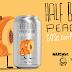 Cervejarias SYNERGY e NARCOSE lançam cerveja colaborativa do estilo Gose