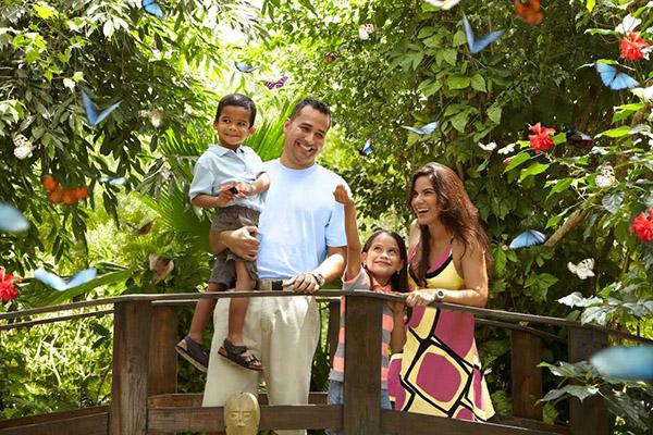 Planes-Aruba-isla-feliz-mamá-turismo