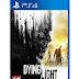 Dying Light Jogo em Mídia Digital