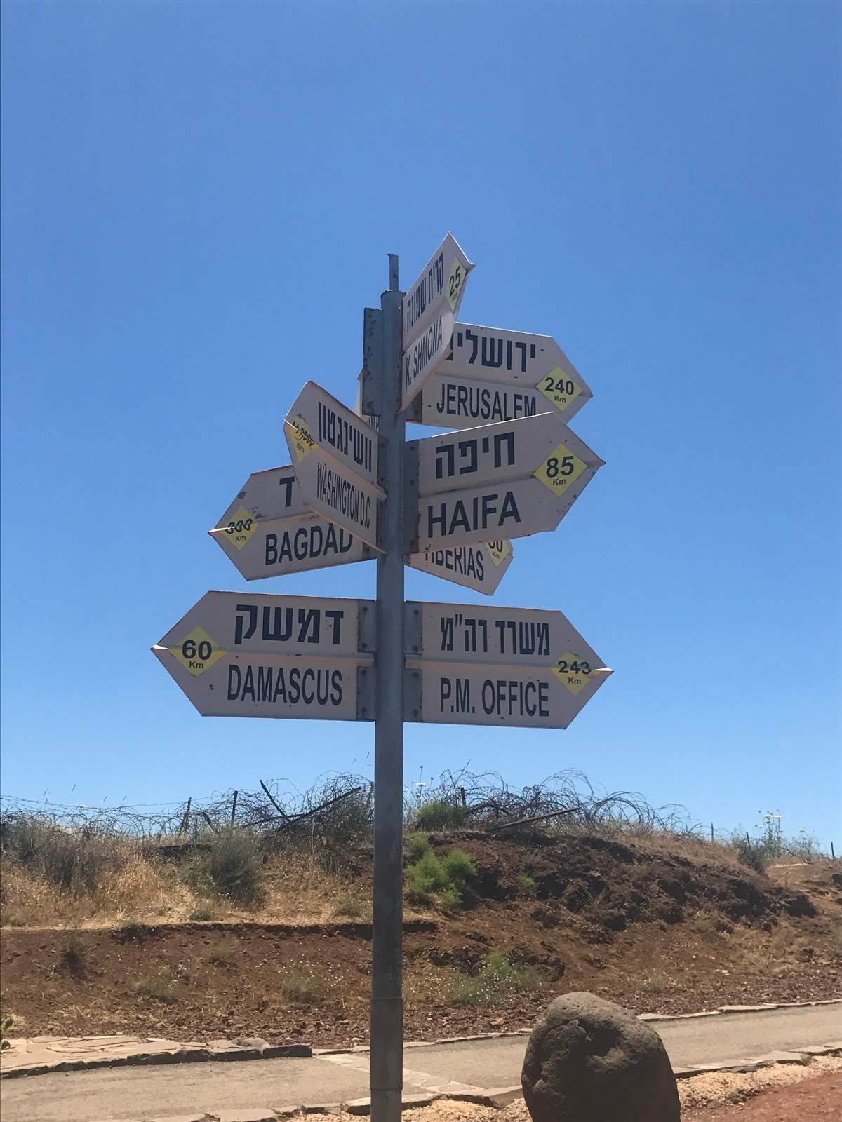 Birthright Israel Guide
